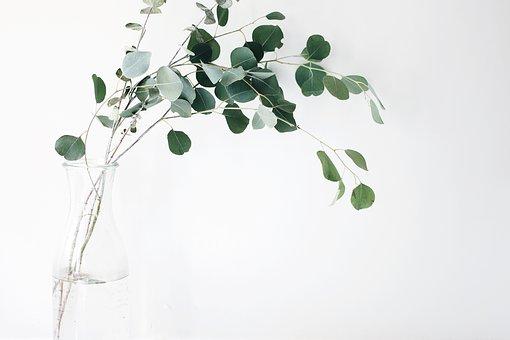 Año nuevo… regala una VIDA NUEVA ōsōji (大掃除)
